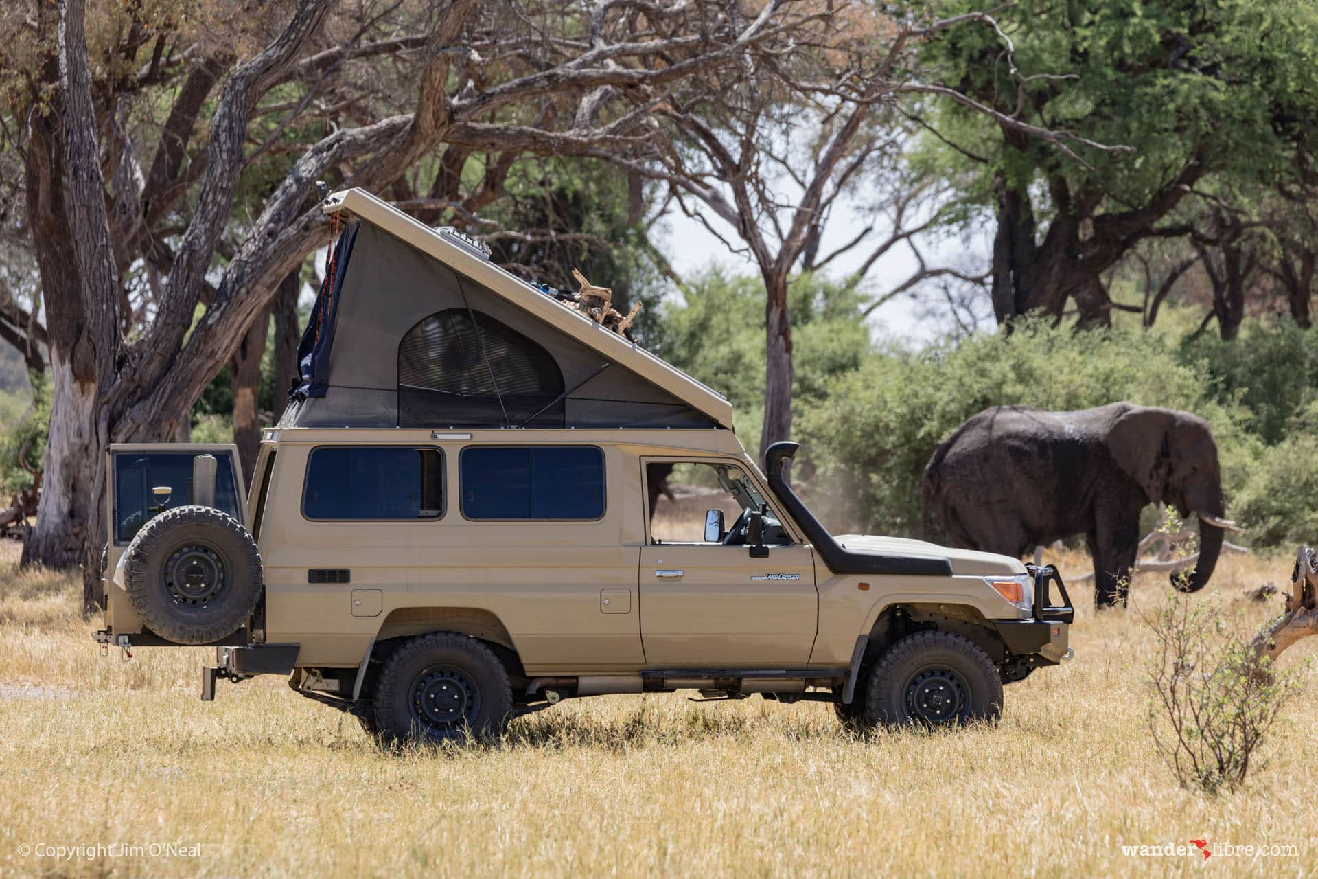 Land Cruiser Troopy Camper Conversion: Part 1 of 4