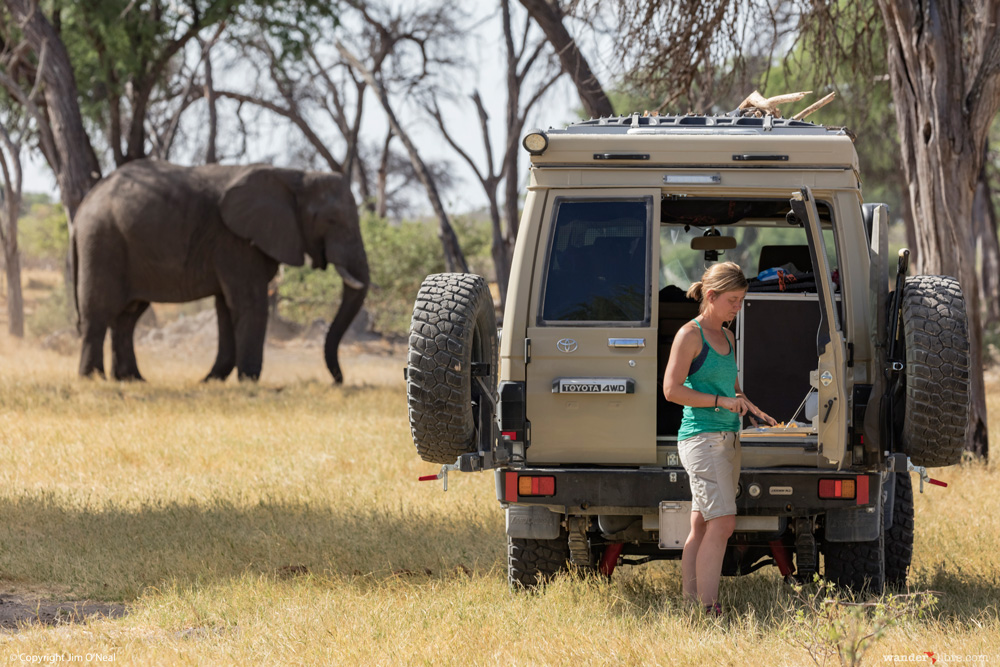 Story Behind the Photo: Camping with Elephants