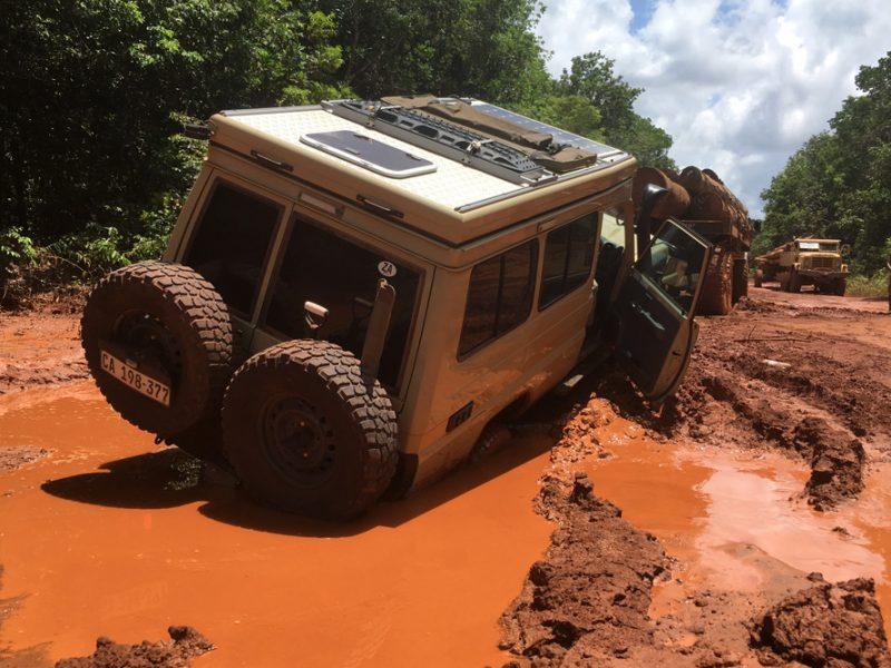 Drive the World: Guyana's Carnivorous Potholes